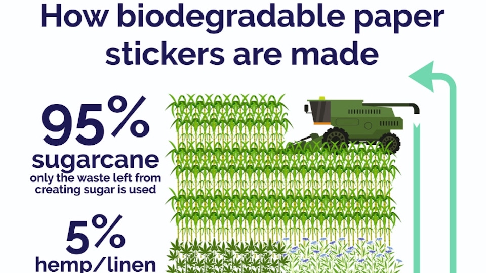 How biodegradable stickers are made information